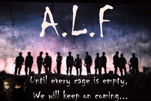 ALF-6758666666